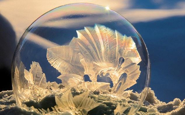 FOTO: uncommonreality.com