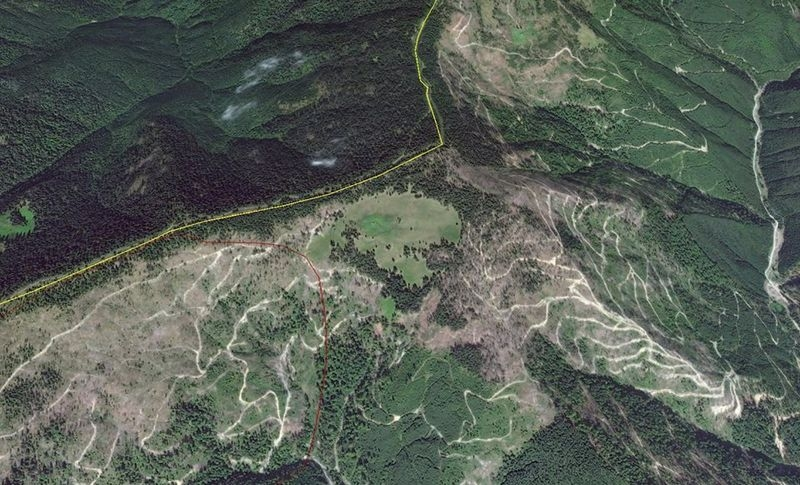 Aceasta Este Imaginea Din Satelit A Masacrului Pădurilor Din